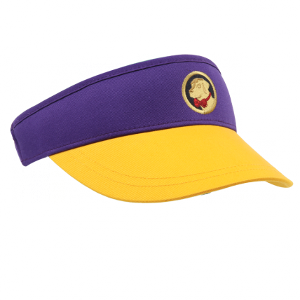 Gold and Purple Visor